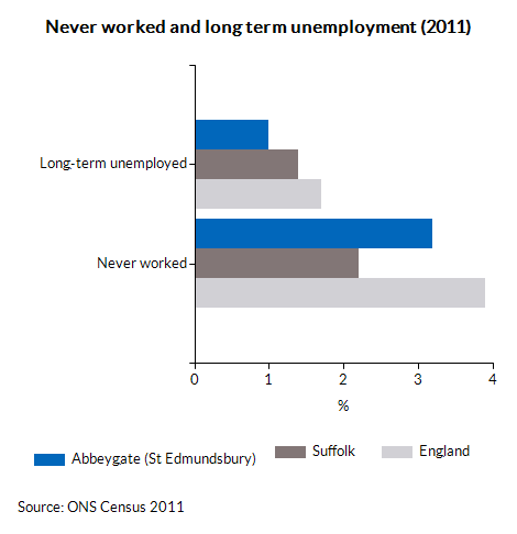 Never worked and long term unemployment (2011)