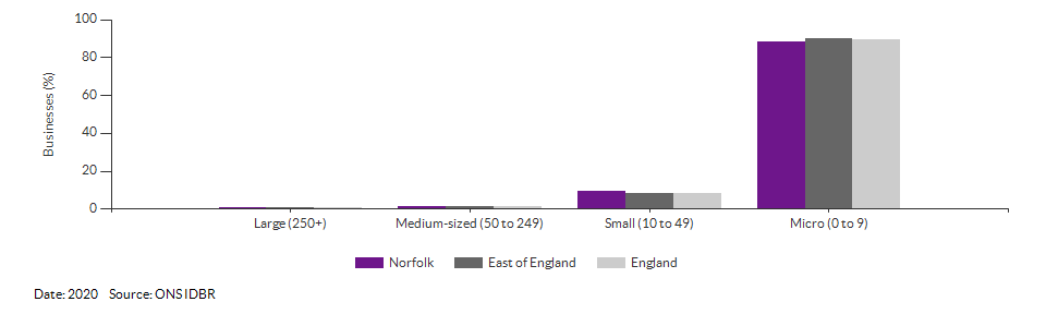 Enterprises by employment size for Norfolk for (2020)