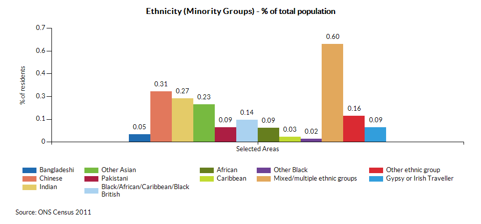 Ethnicity (Minority Groups) - % of total population