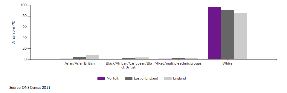Ethnicity in Norfolk for 2011