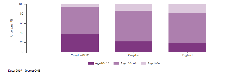 Broad age group estimates for Croydon 025C for 2019