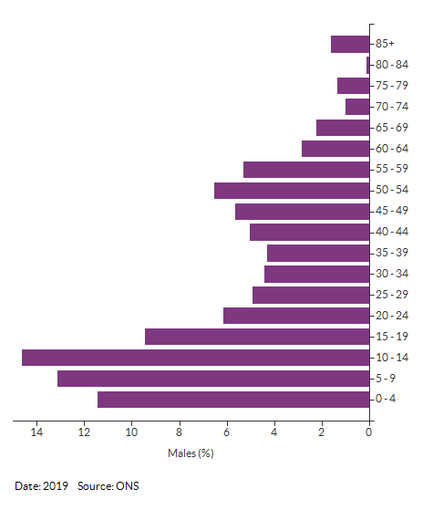 5-year age group male population estimates for Croydon 025C for 2019