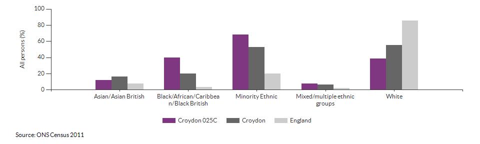 Ethnicity in Croydon 025C for 2011